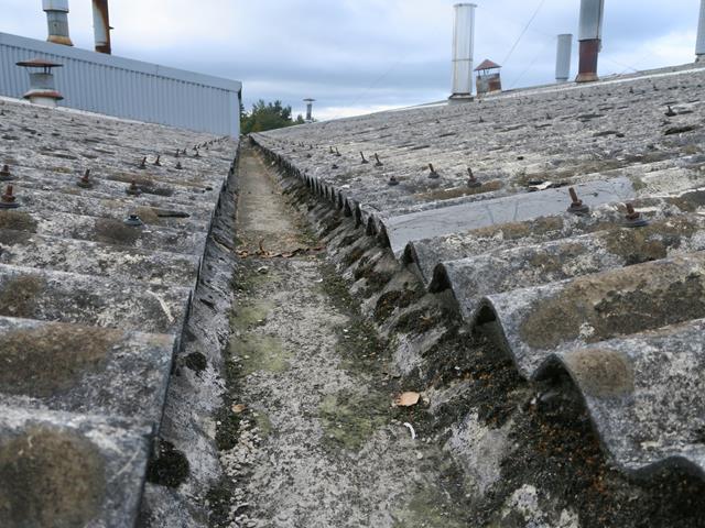 Asbestos roof survey
