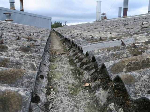 Independent asbestos roof survey